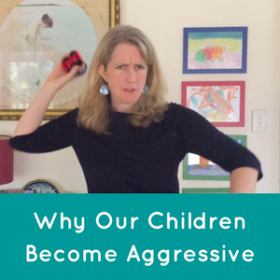 Why Our Kids Become Aggressive